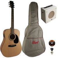Гитарный комплект CAP-810A-NS
