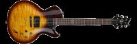 Электрогитара Z-Custom BS