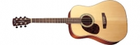 Акустическая гитара EARTH 100 LH NS